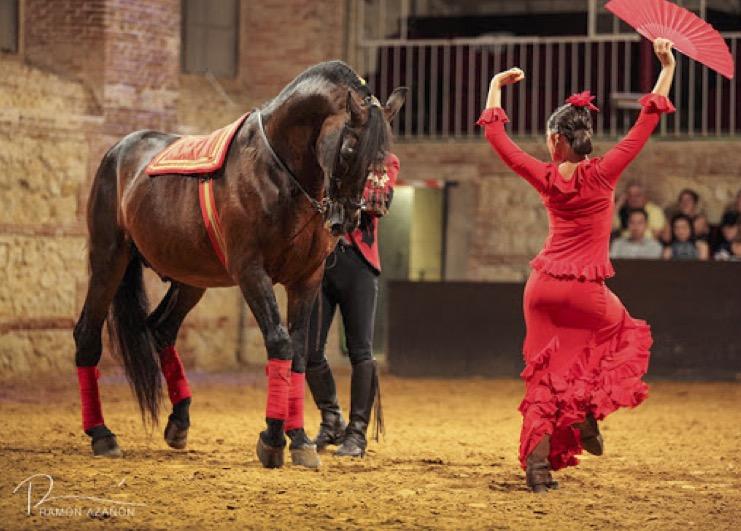 Jerez de la Frontera: Visita guiada a bodega + Espectáculo ecuestre / Sanlúcar de Barrameda